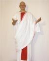 Costume Senatore Cassio