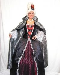 Costume Dama Lady Smith